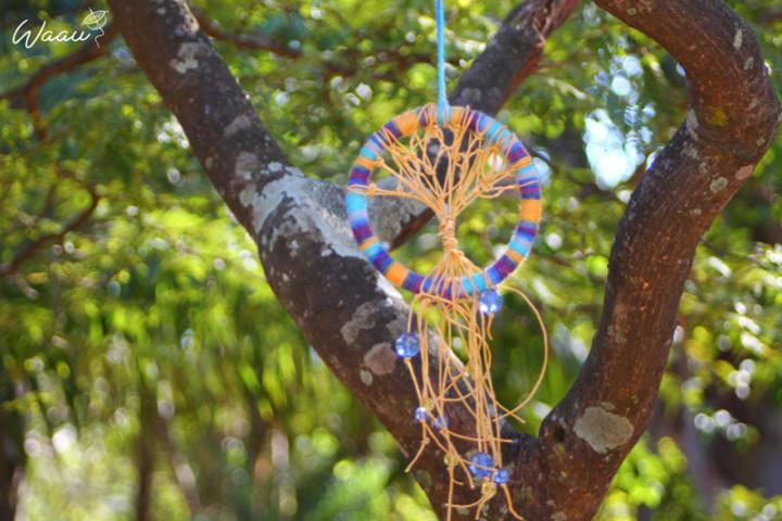 Preferência Como fazer o filtro Árvore dos Sonhos - Waau Ideias CF31